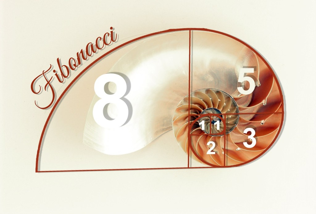 The Fibonacci Series depicted on a nautilus shell.