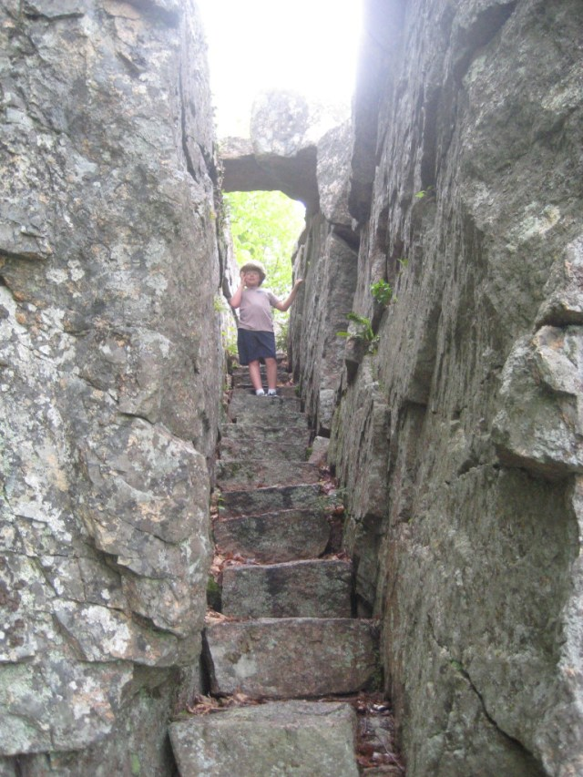 The Homans Path (about a third of a mile) offers granite steps, passages between giant boulders and other interesting features.  Hikers wishing to continue up to Dorr Mountain can pick up the Schiff Trail, featuring ladeders that climb a cliff.  Many choices for longer and shorter loop hikes in this area.