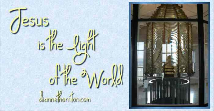 Are you struggling with fear and darkness in this world? The darkness in your own life? Let Jesus step in and shine His Light. He is the Light of the World.