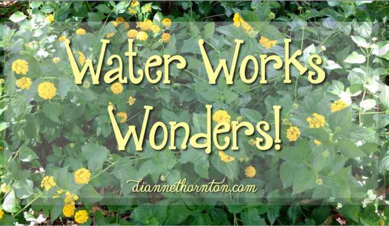 Water Works Wonders