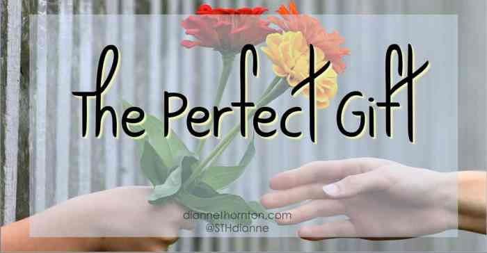 God is the Giver of every good and perfect gift. What is the perfect gift? Read on to find out!