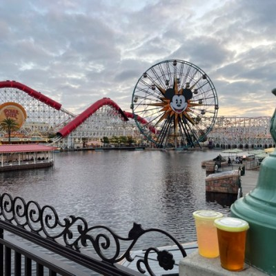6 Things to Know About Disneyland Reopening in 2021