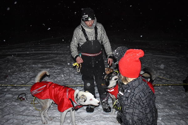 husky dog sledding, dog sledding, Tromsø, Villmarkssenter, Authentic Scandinavia, Hurtigruten, puppies, snow, ice, polar night, diapersonaplane, diapers on a plane, family travel, traveling with kids, creating family adventures, flying standby
