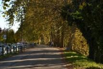 passeggiata sotto le volte dell'autunno