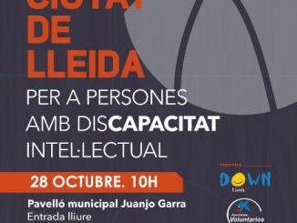 cartell ciutat de lleida bàsquet discapacitat intel·lectual