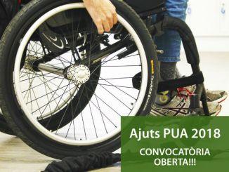 ajuts pua 2018 atenció social persones discapacitat