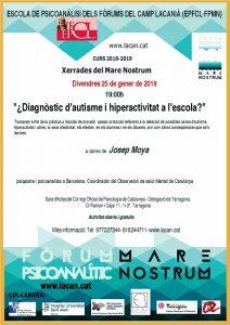 20180125_Conferència_Diagnòstic_dautisme_i_hiperactivitat_a_lescola-0012