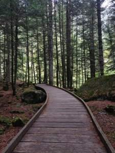 passeres-adaptades-parc-aigüestortes-estany-sant-maurici