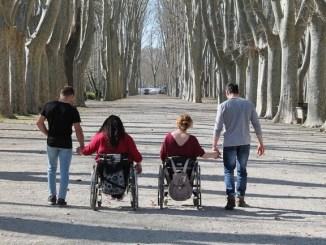 placa-treball-president-macia-2019-associacio-mifas