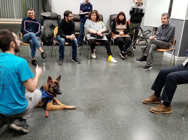 teràpia assistida gossos