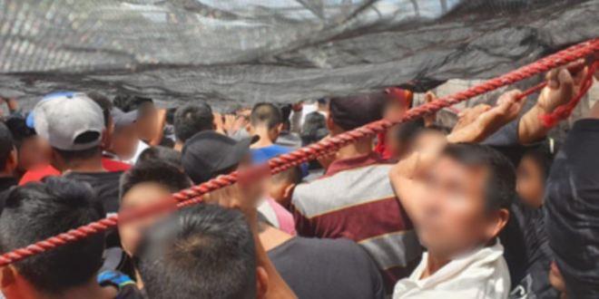 México intercepta dos camiones con más de 200 migrantes 1