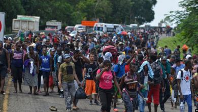 Estudio: Seguridad, trabajo y mejor calidad de vida buscan migrantes centroamericanos
