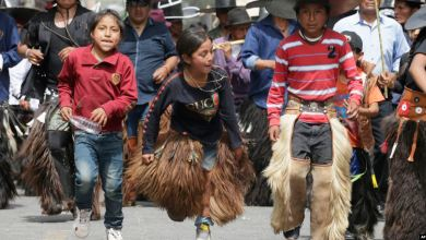 Photo of ONU: Ecuador entre los países con mayor avance en desarrollo humano de la región