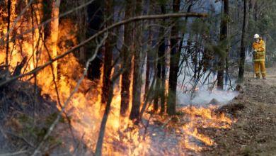 Photo of Tormentas suponen alivio y preocupación en Australia
