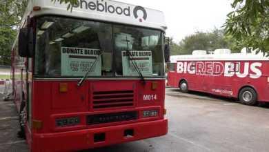 """""""Quiero ayudar"""": norma de la FDA condiciona donaciones de sangre de homosexuales 1"""