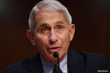 Dr Anthony Fauci, director of the National Institute for Allergy and Infectious Diseases testifies during a Senate Health,…
