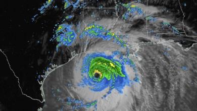 Huracán Laura tocó tierra en Luisiana y Texas sin dejar víctimas 4
