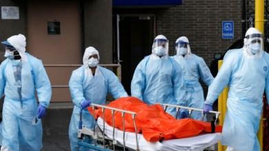 Contagios por coronavirus a nivel mundial superan los 50 millones 2