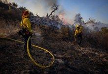 Los Ángeles: Incendio forestal afecta más de 3,000 hectáreas y obliga a evacuación masiva 6