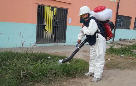 pag.9_dengue