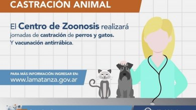 Photo of Zoonosis: vacunación y castración gratuita en Virrey del Pino, Ciudad Evita y Lomas