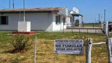 Photo of Anuncian la sentencia del juicio por el caso de una escuela fumigada