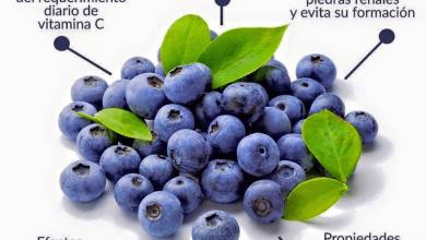 Photo of Los Arandanos, pequeñas bayas de color azul, cuáles son sus beneficios?