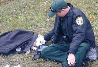 Photo of La imagen de un policía que abrigó a una perra herida que dio vuelta al mundo
