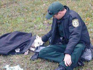La imagen de un policía que abrigó a una perra herida que dio vuelta al mundo