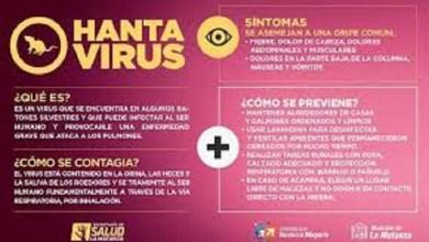 Photo of Morón no registra casos de hantavirus