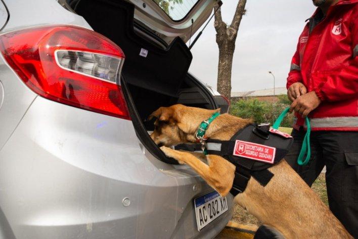 Morón incorporó una unidad canina