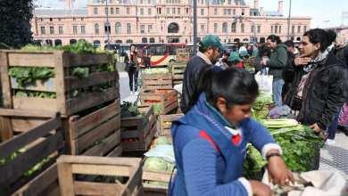 Photo of Sector en crisis: los pequeños productores al borde de desaparecer