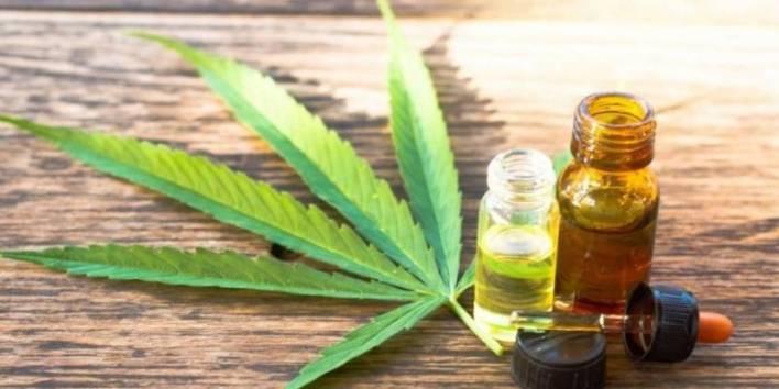 Habrá un curso virtual sobre cannabis terapéutico para vecinos de San Martín