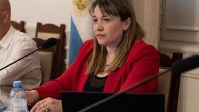 Photo of «Todo lo que pueda escuchar de la oposición, no me importa»