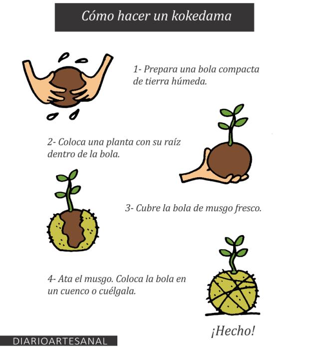 Maceteros caseros org nicos t cnica kokedama bolas de for Pasos para elaborar un vivero