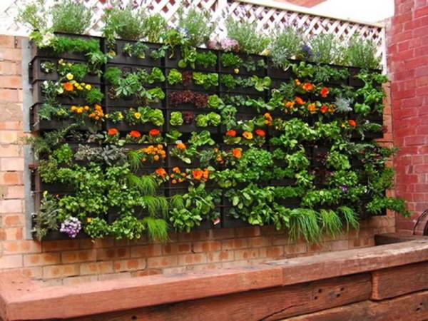Jardín colgante para una huerta en casa