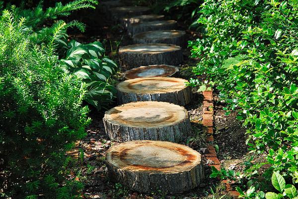 Sendero de jardin con troncos