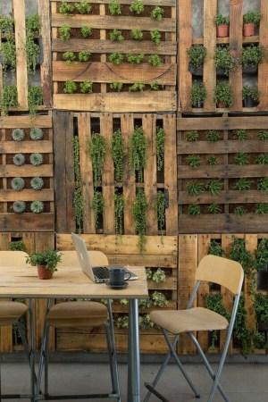 Revestimiento de pared con jardines verticales con palets