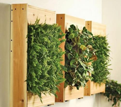 Jardin vertical con palets para el interior