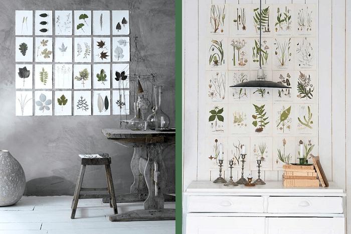 Ideas para una decoracion botanica