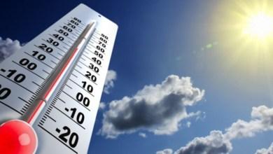 ola-de-calor-ministerio-de-salud-diarioasuncion
