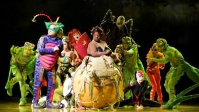 cirque-du-soleil-ovo-diarioasuncion