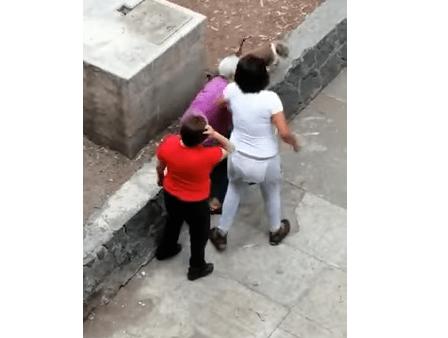 Adolescente golpea a abuelita porque su perro le ladró