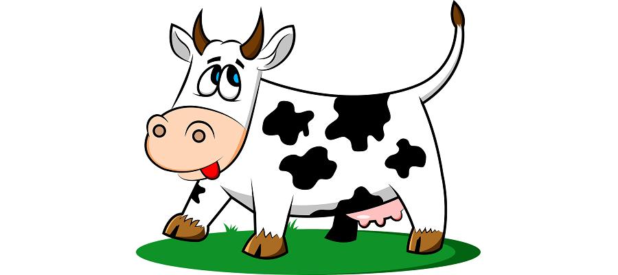 Una vaca acusada de beber cerveza