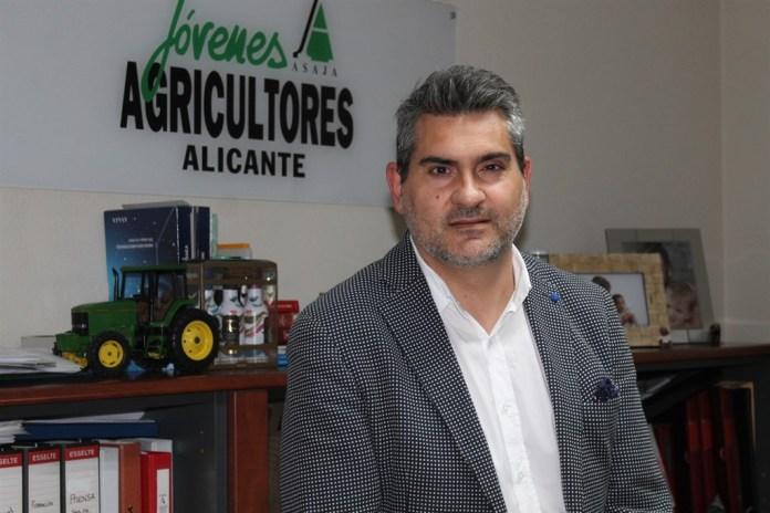 barro Diario de Alicante