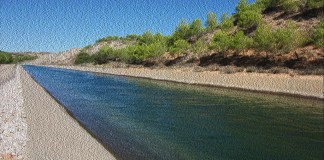 agua Diario de Alicante