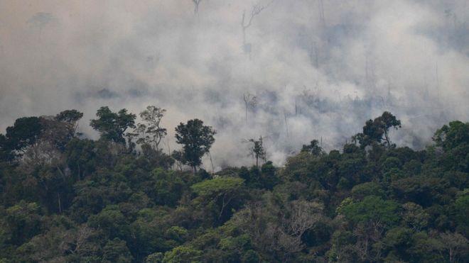 Incendio en el Amazonas / AFP