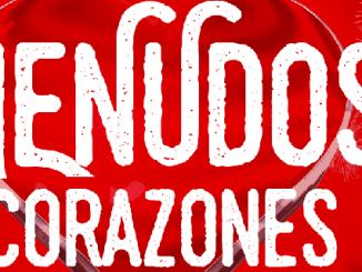 Fiesta Benéfica Menudos Corazones