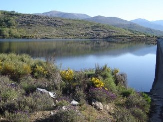 Situación actual de la presa Las Majadillas de Jaraíz de la Vera