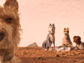 Isla de Perros de Wes Anderson - Fiesta Fin de Temporada | Cineclub El Gallinero
